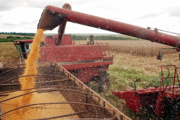 As principais culturas responsáveis pelo aumento da produção foram a soja, o café arábica e o algodão herbáceo (Foto: Agência Brasil)