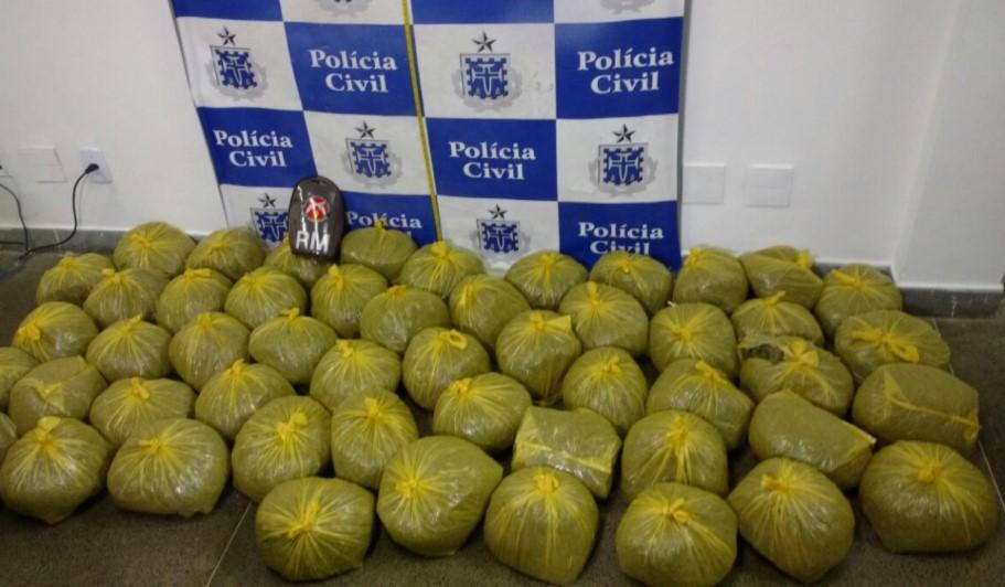 Droga foi localizada na Fazenda Grande do Retiro por equipes da 9ª CIPM (Foto: SSP/Divulgação)
